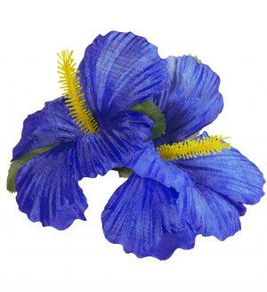 Clama Hawaii Albastra