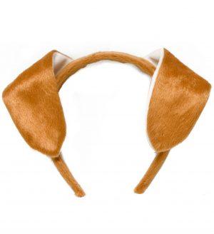 Urechi Catel