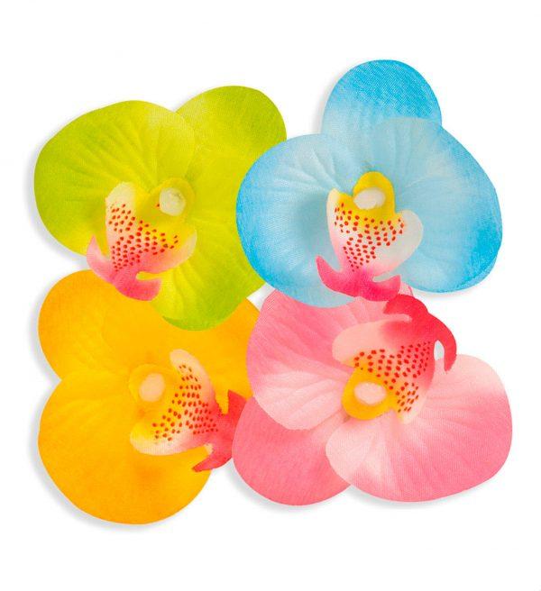 Orhidee Decorative